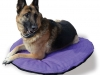Dog Bed Product Photography