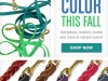 Color Promo Email Marketing