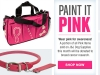 Paint it Pink Homepage Banner